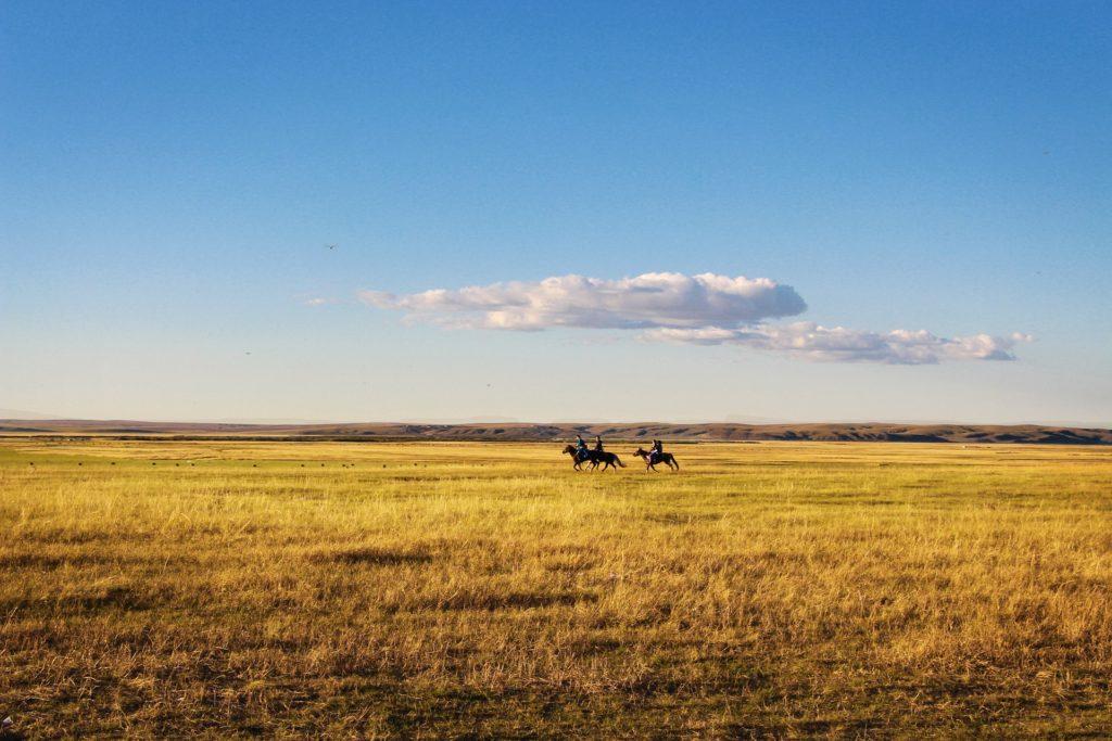 Das Glück der Erde, liegt auf dem Rücken der Pferde! Aber meiner Meinung nach nur mit der richtigen Einstellung in der Partnerschaft zum Pferd.