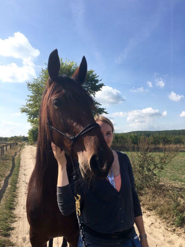 Pferde schenken einen in schlechten Zeiten Trost.